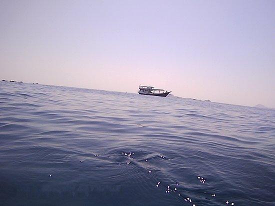 Komodo, إندونيسيا: Manta point