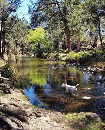 Capertee, Australien: IMG_20181002_075416_945_large.jpg