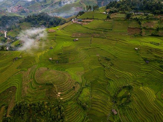 Фотография Mu Cang Chai