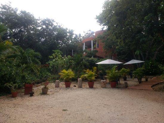 Santa Elena-billede