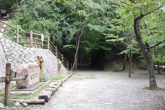 Shinsui Hiroba