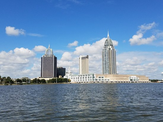 "Gulf Coast Ducks Land & Water Splash Tour: Gorgeous view from the ""boat"""