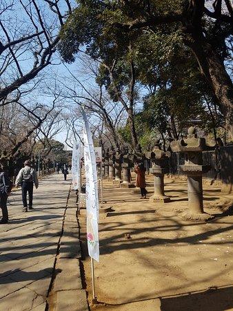 สวนอุเอโนะ: 우에노 공원