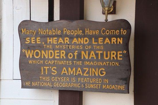 Old Faithful Geyser of California: Wonder of Nature