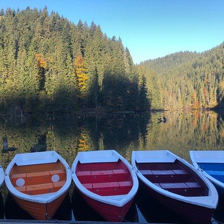 Lacu Rosu, Rumänien: photo0.jpg