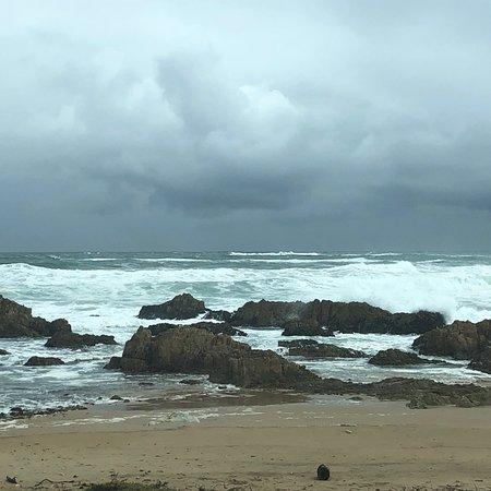 Brenton-on-Sea, Afrique du Sud : photo6.jpg