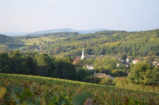 Domaine Debreuille