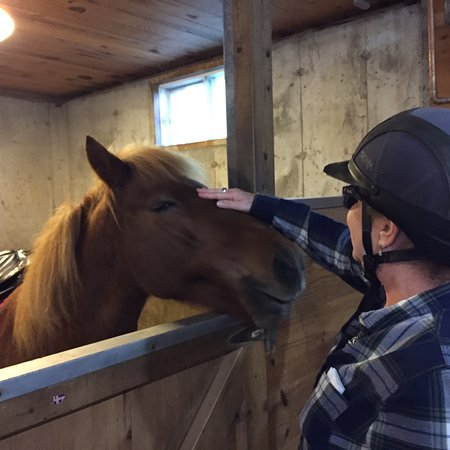 Vermont Icelandic Horse Farm: photo0.jpg