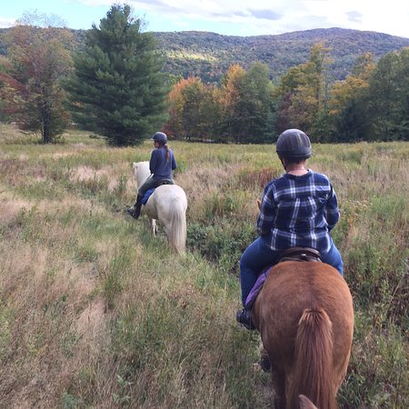 Vermont Icelandic Horse Farm: photo3.jpg