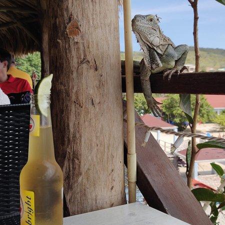 Lagun, Curaçao: photo0.jpg