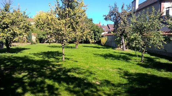 Welp aangrenzende tuin / fruitbomen - Picture of Rotisserie Henri IV AC-97