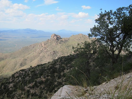 Sells, Аризона: One of many views from drive up to Kitt Peak