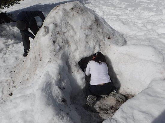 Talamanca de Jarama, Spain: Construcción de iglu en la nieve en Guadarrama