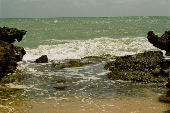 Praia do Coqueirinho: Um pouco do Mar