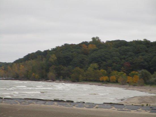 Fair Haven, Estado de Nueva York: Trees just staring to change