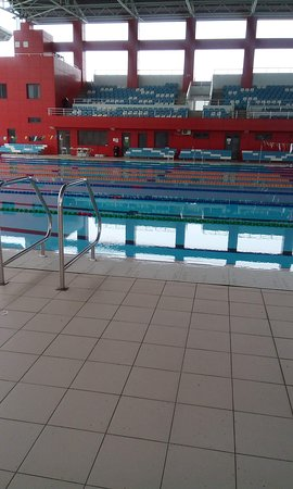 National Aquatic Centre: Swimming Area