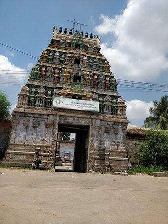 Villupuram, Индия: Panangatteswarar Temple