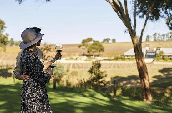 来自阿德莱德的超小型麦克拉伦谷葡萄酒爱好者探险之旅
