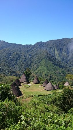 Wae Rebo Village: all houses view from the library
