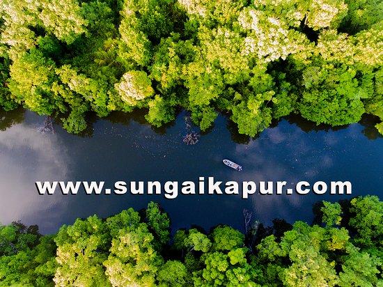 Лахад-Дату, Малайзия: Sungai Kapur