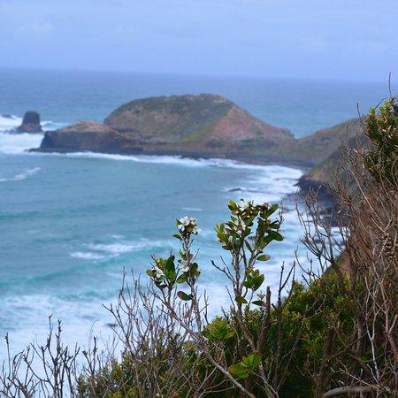 Mornington Peninsula, Australia: photo9.jpg