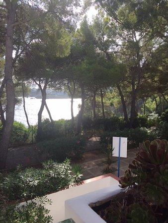 Cala Llenya, España: Terrasse d une petite suite