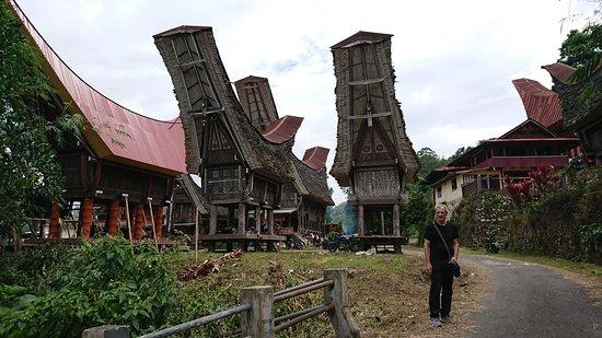 Toraja Village: village Toraja