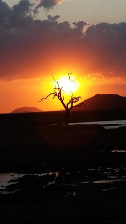 The Bush House: Spectacular sunset out on game drive