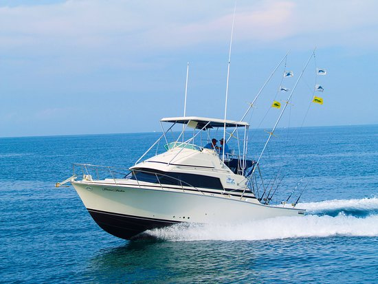 Vallarta Fishing Charters