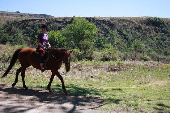 Cathkin Park, Νότια Αφρική: A horse rider on the trail