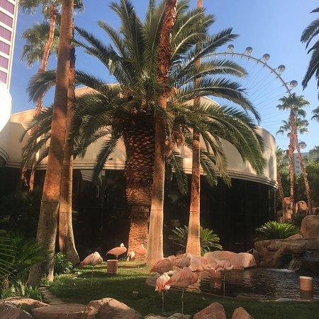 Carlos'n Charlie's Las Vegas: photo0.jpg