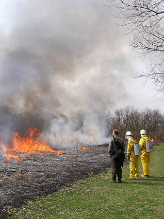 Gambier, Οχάιο: Annual prairie burn.