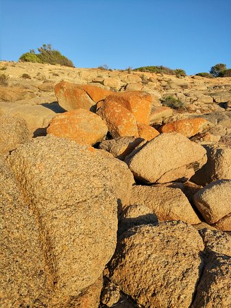Port Elliot, Australien: costal rocks