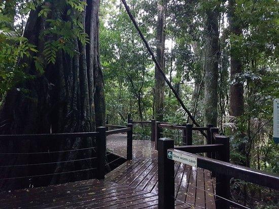 Natural Bridge 사진