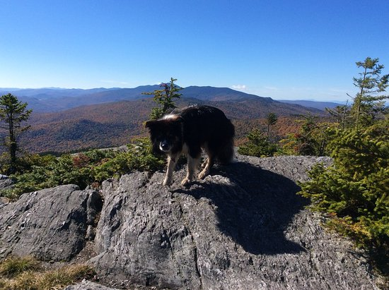 Roxbury, VT: Burnt Rock Mountain hike