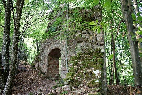 Obersteinbach, Frankreich: Mauerrest mit Tor.