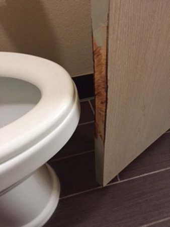 Baymont by Wyndham South Haven: Door shaved to keep from hitting on toilet.