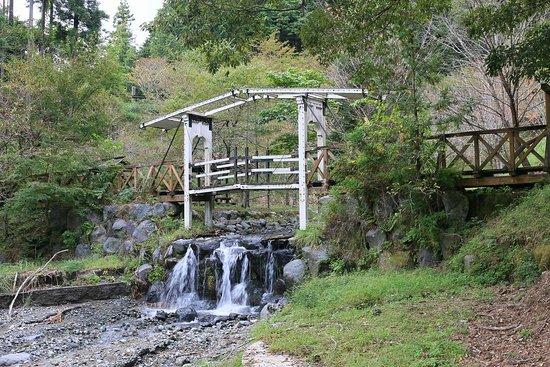 Yaegiri Pond