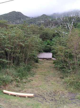 Miyake-jima, اليابان: 泥流で埋まってしまった鳥居