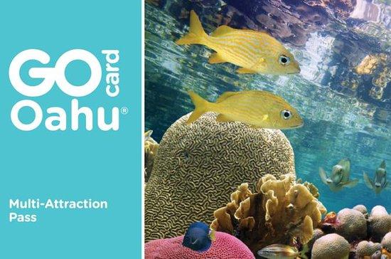 Carta Go Oahu