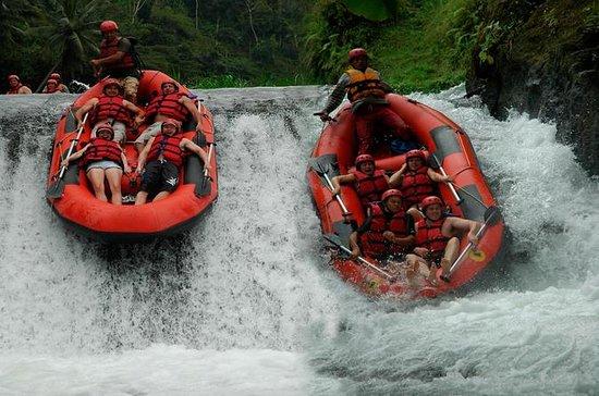 White Water Rafting på Telaga Waja...