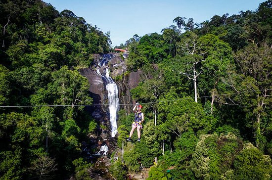 12 Flights: Zipline Eco Adventure in...