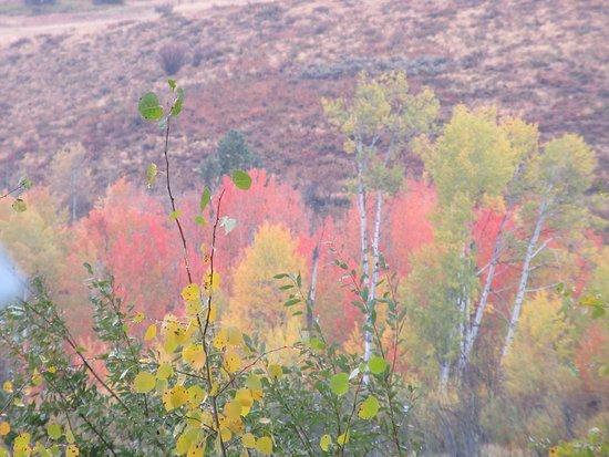 Sun Mountain Lodge: Fall colours on the trails