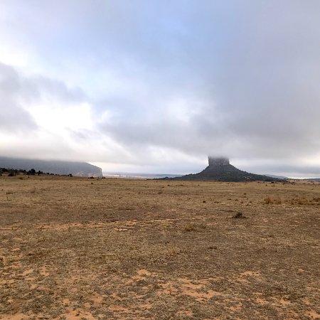 Manyeleti Game Reserve, Sør-Afrika: photo6.jpg