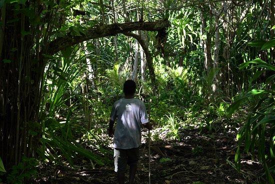 คาเวียง, ปาปัวนิวกินี: Big Nusa trail