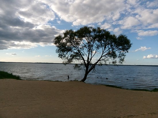 Great by the Lake