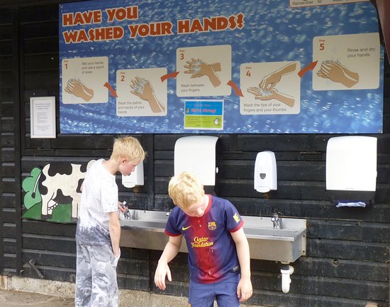 Lee Valley Park Farms: hand washing area