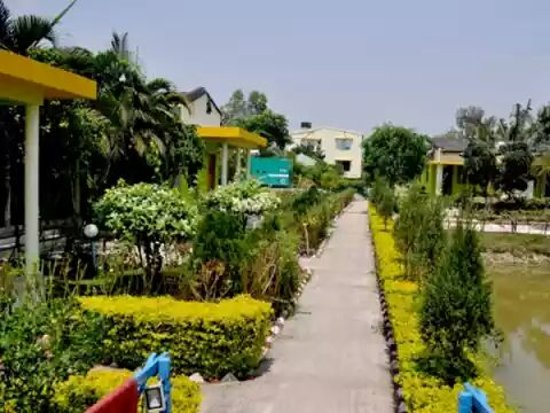 Sundarban照片
