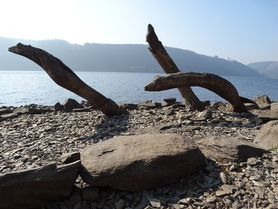Llanwddyn, UK: Carved leaping eels