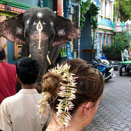 Arulmigu Manakula Vinayagar Temple: photo0.jpg